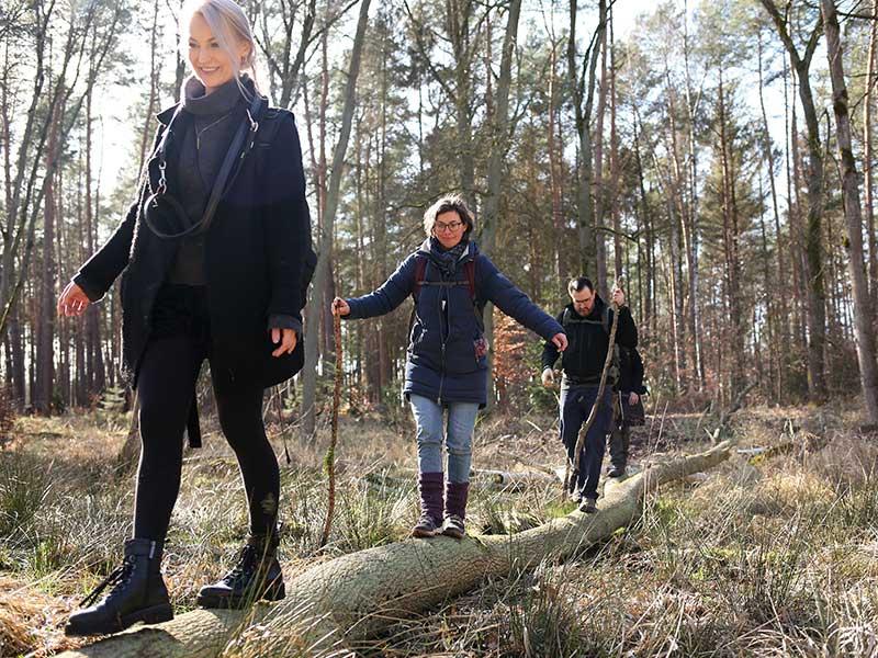 Menschen balancieren über Stamm im Wald