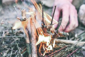 Survival 3 WILDVENTURES FIRE