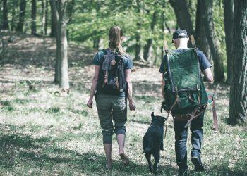 Teamtraining 2 WILDVENTURES HIKING